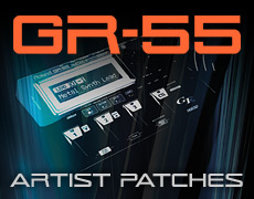 GR-55 Artist Patches