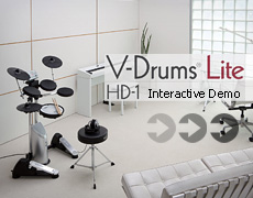 HD-1 Interactive Demo