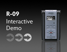 R-09 Interactive Demo